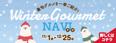 Winter Gourmet NAVI